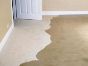 wet carpet flood tips