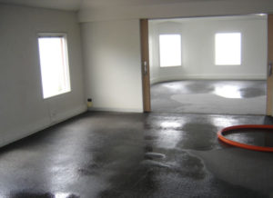 water damage Auckland