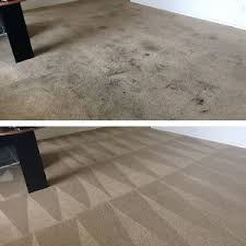 carpet cleaning reviews