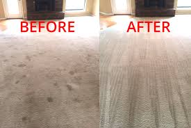 DIY carpet cleaning Auckland Service